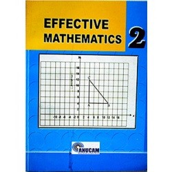 Effective Mathematics 2