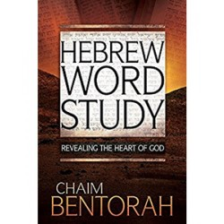 Hebrew Word Study Bible